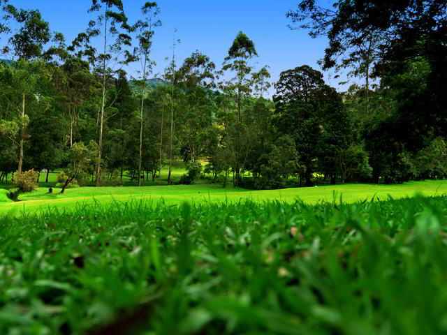 Nuwara Eliya golf ground