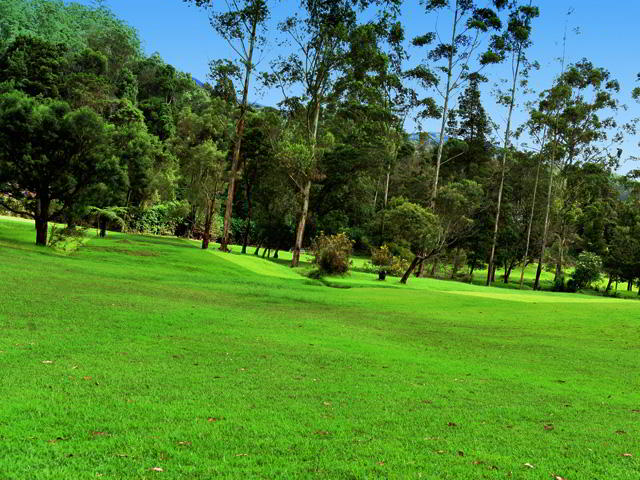 Nuwara Eliya - city of green